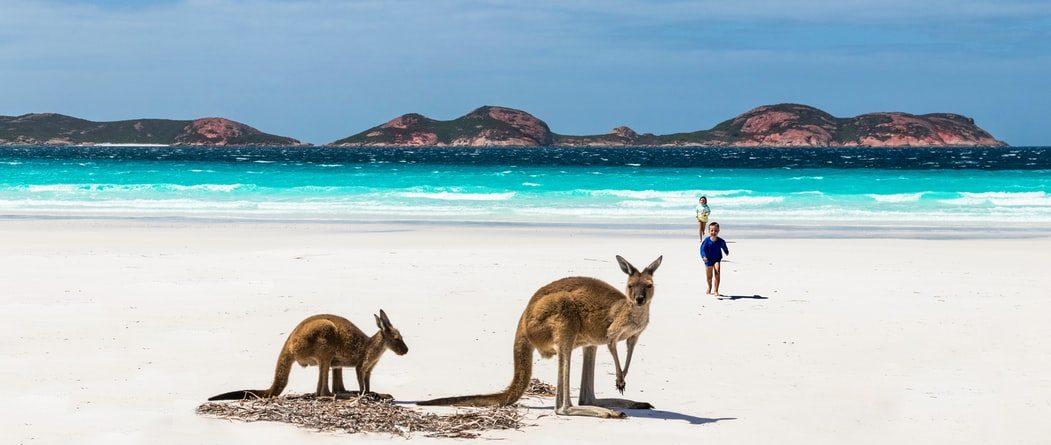 Почему Австралия
