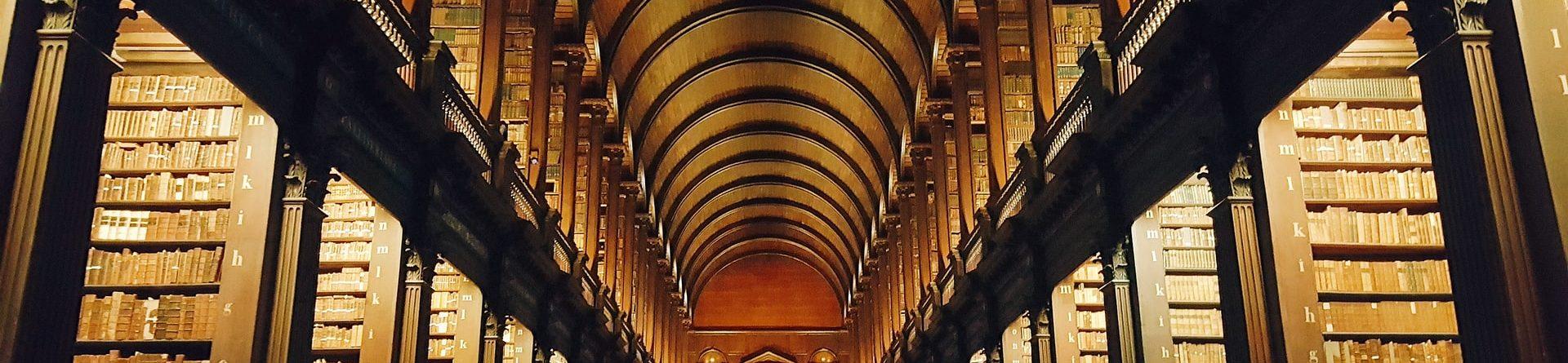 Высшие учебные заведения Ирландии