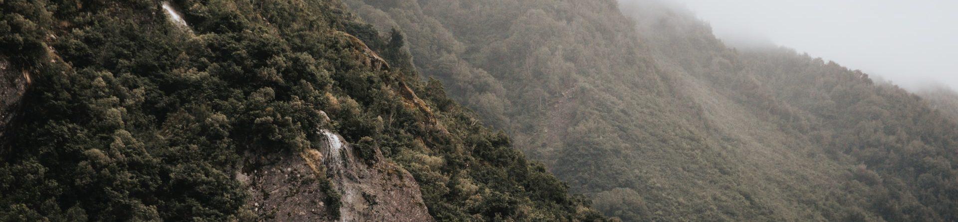 Kiwi Tours